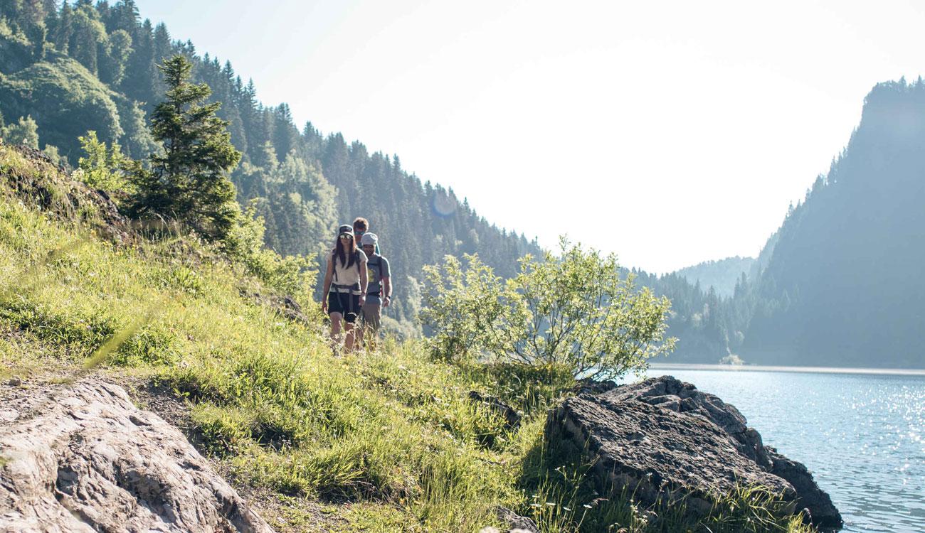 wellness-summer-safari-home