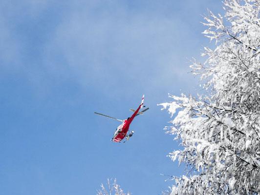 A-Good-Heli-Ski-Trip-Swisskisafari
